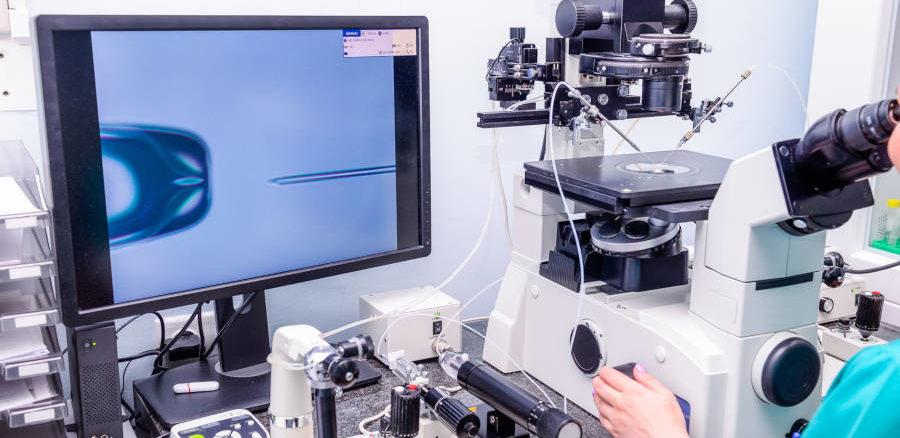 أسعار الحقن المجهري في تركيا أفضل تقنيات علم الأجنة تركي ويز