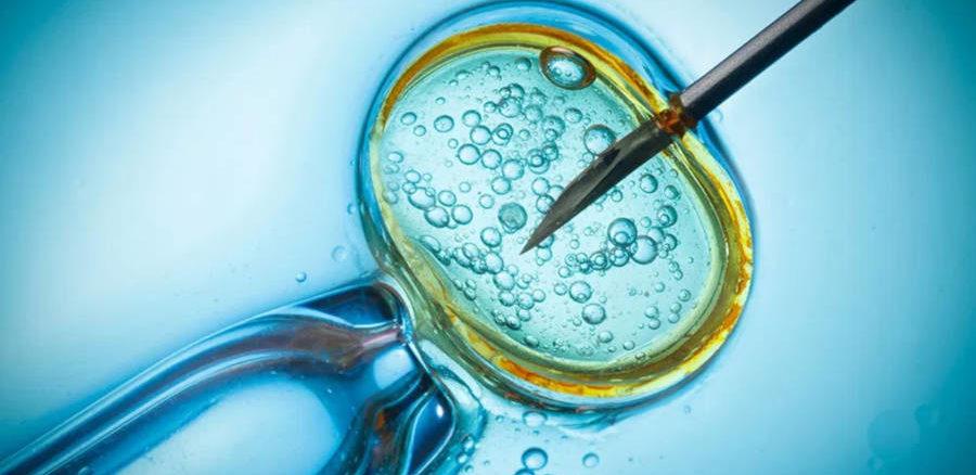 علاج العقم عبر الحقن المجهري او ما يعرف أطفال الأنابيب في تركيا